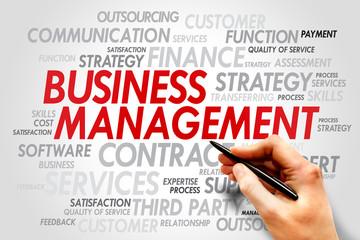Business Management words cloud, business concept