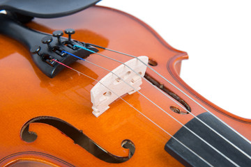 close up on the bridge of a violin
