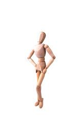 Wooden model of human
