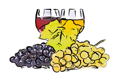 Drawn grapes and glass of wine