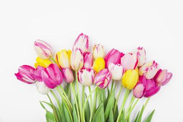 Bunte Tulpen vor weißem Hintergund