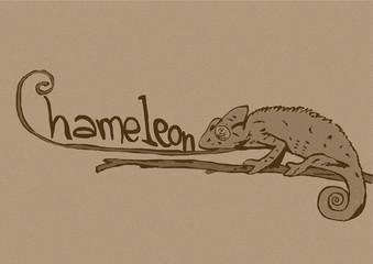 Vintage chameleon