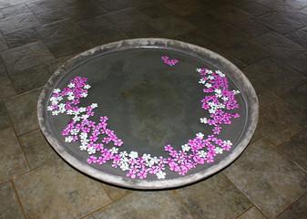 Чаша с водой и лепестками цветов Франджипана