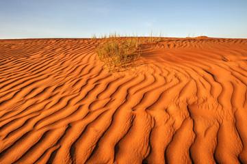 Desert landscape, Wahiba Sands, Oman