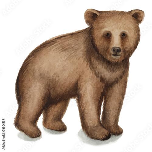 Fotobehang Leeuw Brown bear
