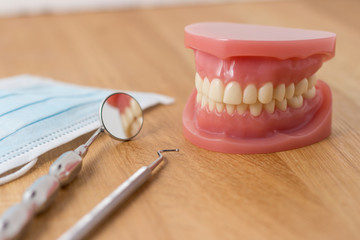 Set of false teeth with dental tools