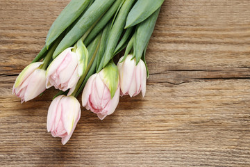 Beautiful pink and white tulips on wooden background