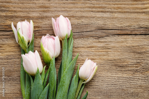 Beautiful pink and white tulips on wooden background - 76305501
