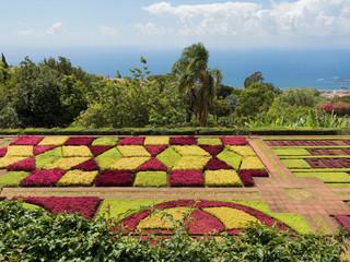 Jardim Botanico da Madeira / Botanischer Garten