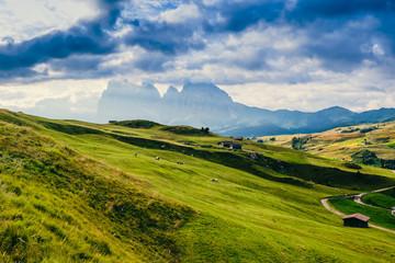 Paesaggio montano delle Alpi di Siusi, Dolomiti