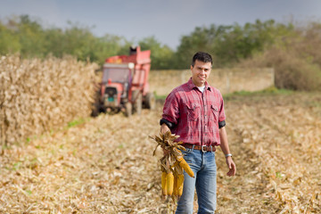 Man on corn field