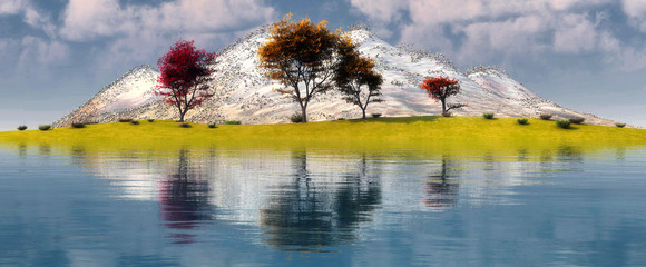 trees and reflection