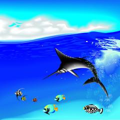 underwater with marlin