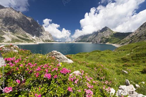 canvas print picture Bergsee mit Alpenrosen
