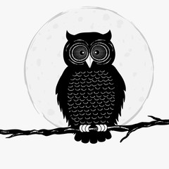 Black owl on branch