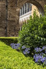 andalucia, garden