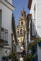 Andalusia, alley