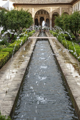 andalucia, garden of Alhambra