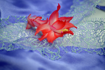 Flower on a negligee for Valentine's Day