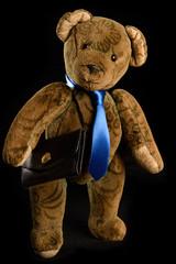 Teddy als Geschäftsmann mit blauer Krawatte und schwarzer Akten