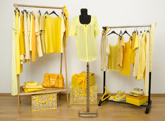 Dressing closet with yellow clothes on hangers and dummy.