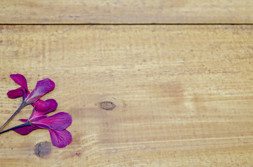 Dried pink flower on a wooden table