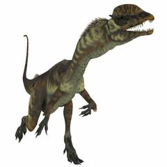 Dilophosaurus Dinosaur over White