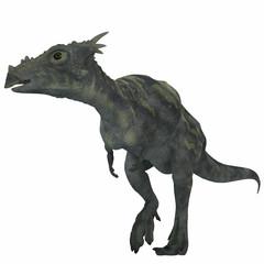 Dracorex Dinosaur over White