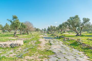Hippodrome of Umm Qais in northern Jordan near the Gadara