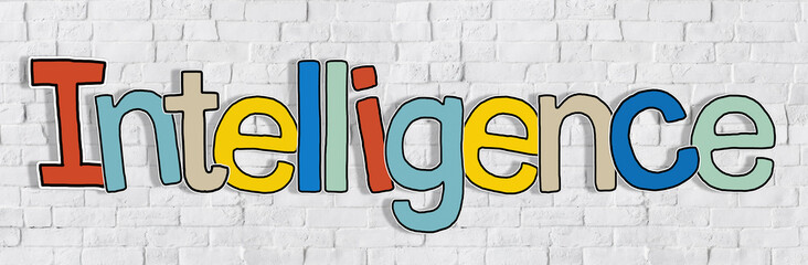 Intelligence Brick wall Single Word Text Background Concept