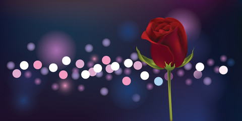 Rose with blur background Illustration