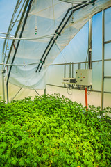 the irrigation control system of modern greenhouse