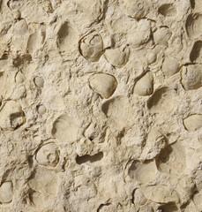 Cladding  stone tiles closeup