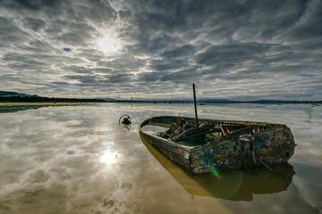 old boat in wetlands