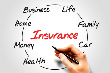 Circular Insurance process chart, business concept