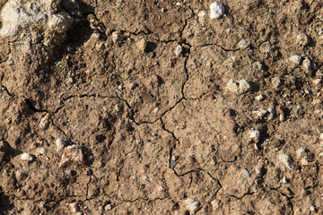 Steiniger Erdboden