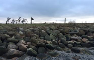 bikes in the horizon