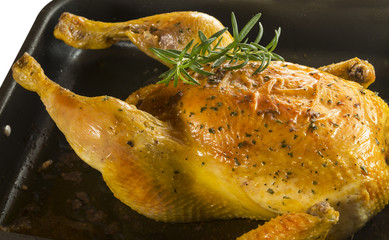 Asando pollo