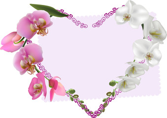 heart symbol from white and pink orchid flowers
