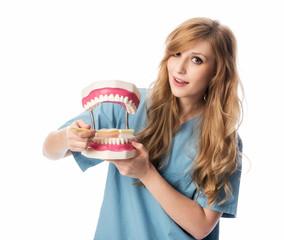 Zahnärztin putzt Zähne