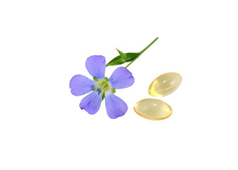 Flax Flower and capsules