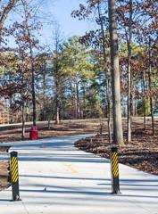 Walking Path Through Winter Park