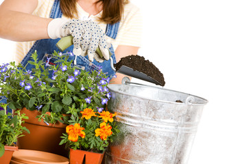 Garden: Woman Working on Potting Seedlings