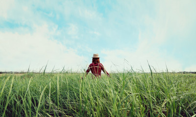 Hipster girl walking on summer field