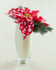 Composition from Poinsettia Plant with spruce branches in glass