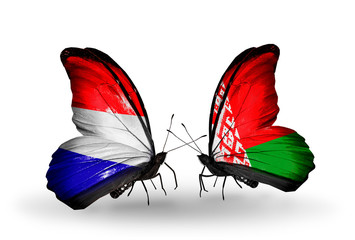 Two butterflies with flags Holland and Belarus