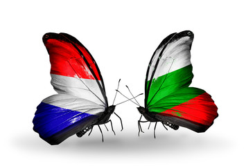 Two butterflies with flags Holland and Bulgaria