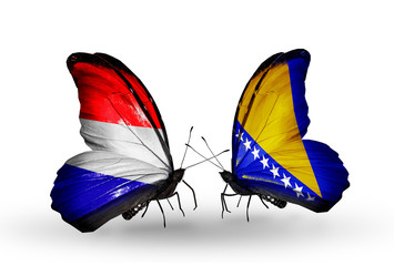 Two butterflies with flags Holland and Bosnia and Herzegovina
