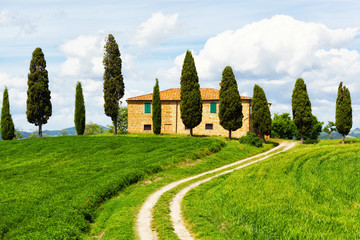 Rural house and cypress avenue,Tuscany, Italy