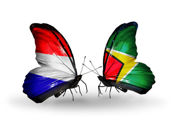 Two butterflies with flags Holland and Guyana